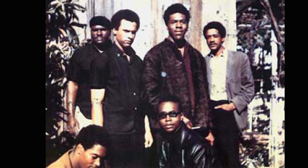 Black panthers for self defense