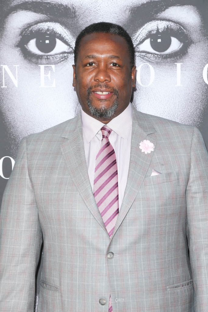 "03/31/2016 - Wendell Pierce - ""Confirmation"" TV Movie Los Angeles Premiere - Arrivals - Paramount Theater on the Paramount Studios Lot - Hollywood, CA, USA - Keywords: Vertical, Arrival, Attending, People Person, Movie, Portrait, Photography, HBO Television Show, Drama, Film Industry, Arts Culture and Entertainment, Celebrity, Celebrities, Red Carpet Event, Anita Hill, Judge Clarence Thomas' nomination to the United States Supreme Court, sexual harassment, abuse of power, Los Angeles, California Orientation: Portrait Face Count: 1 - False - Photo Credit: PRPhotos.com - Contact (1-866-551-7827) - Portrait Face Count: 1"