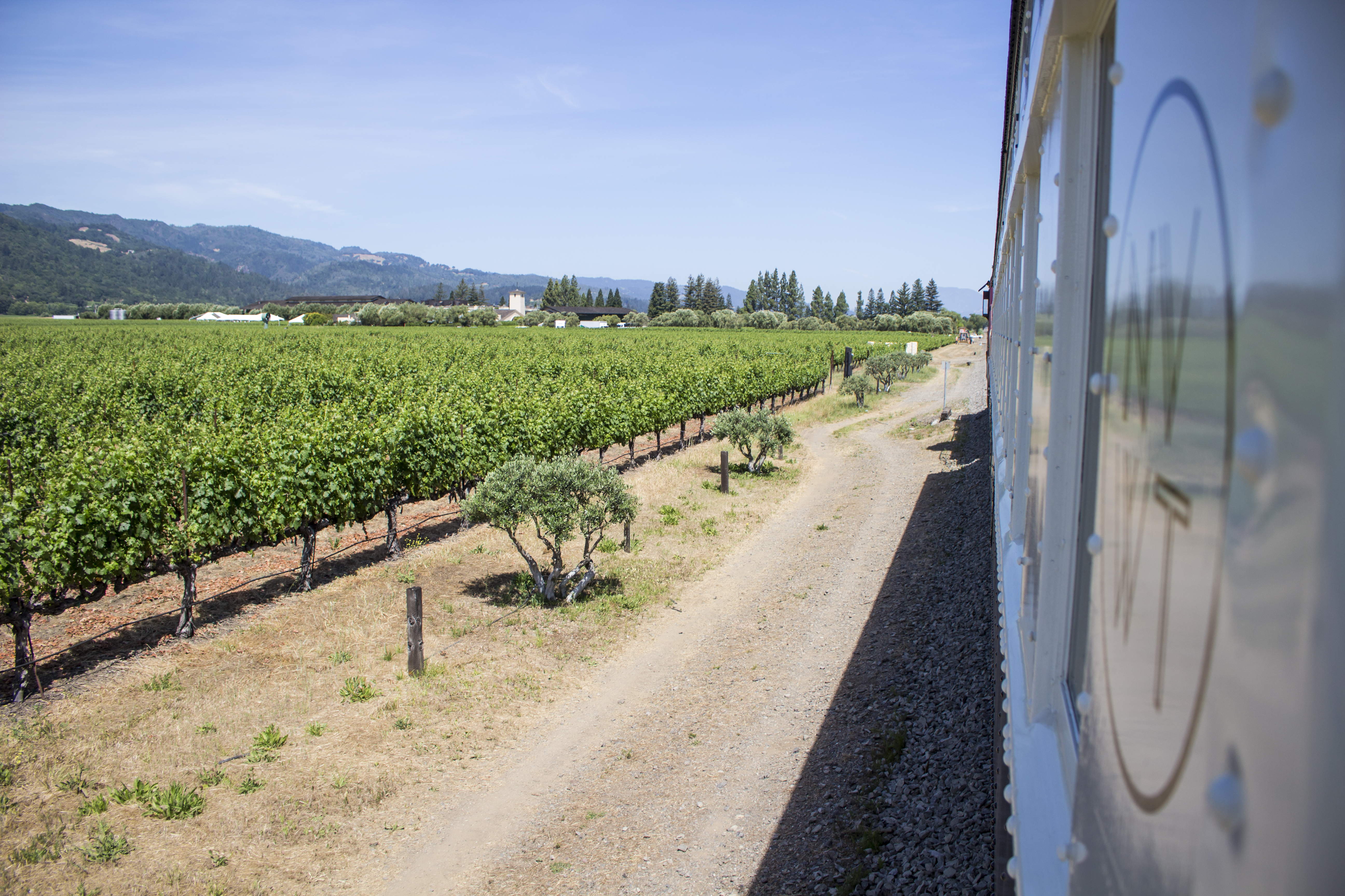 All Aboard…The Wine Train